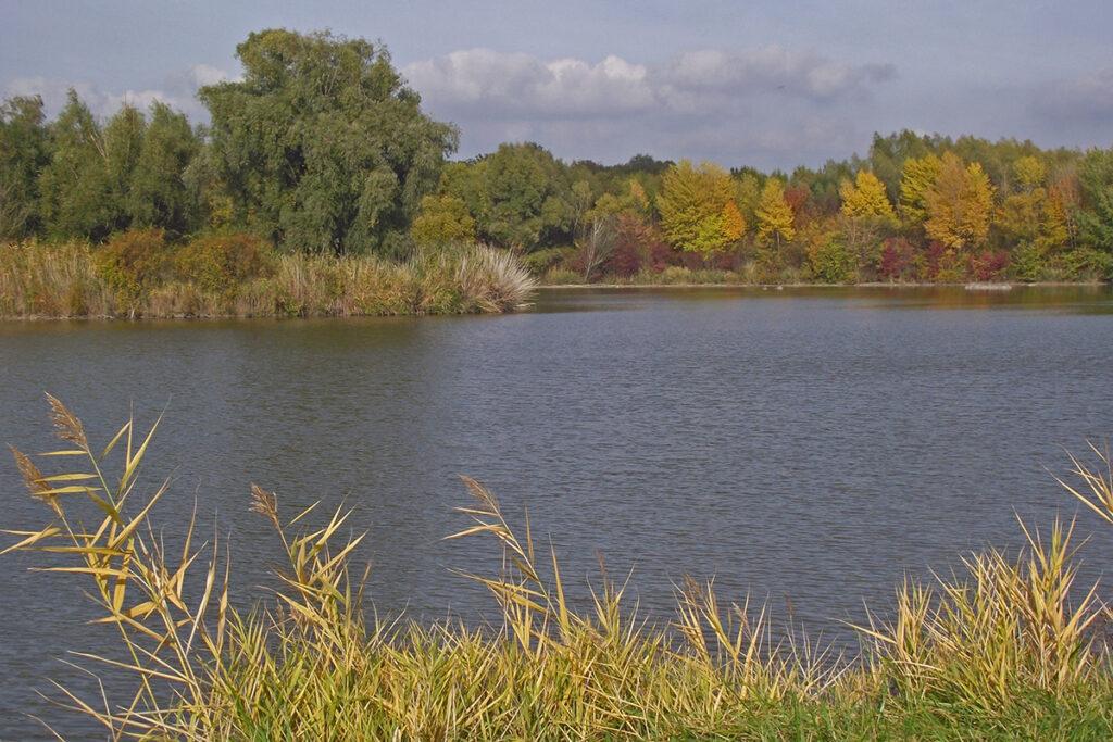 Rybník Pokran